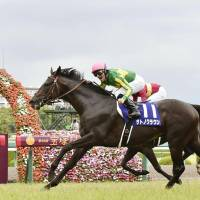 Satono Crown takes Takarazuka Kinen title