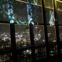 [VIDEO] Tokyo Tower Summer Light Fantasia