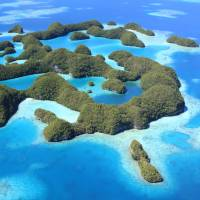 Palau boasts incredible maritime diversity