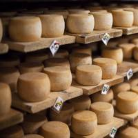 The bilateral economic partnership agreement between the European Union and Japan could hit local dairy farmers and wineries hard. | ISTOCK