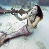 Underwater music festival held at Florida reef