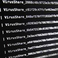 A list of viruses at the LHS (High Security Laboratory) of the INRIA (National Institute for Research in Computer Science and Automation) in Rennes, France, is displayed on a screen. | AFP-JIJI