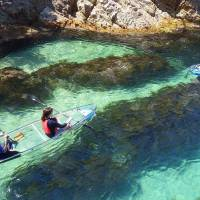 Visitors enjoy paddling in transparent kayaks off the coast of Tottori Prefecture. | TOTTORI PREFECTURE NATURE EXPERIENCE SCHOOL / VIA KYODO