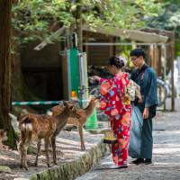 Depopulation, tourism on voters' minds as Nara gears up for mayoral election