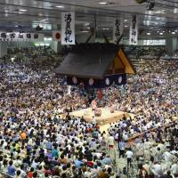 Sumo body warns wrestlers to beware of venomous ants during Nagoya tourney