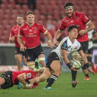 Former Springboks coach Mallett rips into Sunwolves after Lions rout
