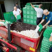 Dutch, German supermarkets scramble to destroy eggs linked to growing insecticide scandal