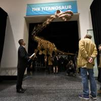 Newly named dinosaur species Patagotitan tops scales, was as heavy as space shuttle: study