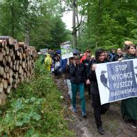 Protesters from across Europe slam Poland's logging of UNESCO-site primeval forest