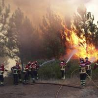 Portugal holding 61 arson suspects as wildfires continue to sow destruction