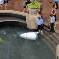 Fountain fall doesn't dampen enthusiasm for security robots