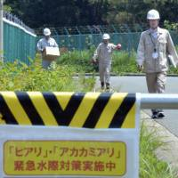 Japan, China, South Korea environment chiefs team up on fire ants