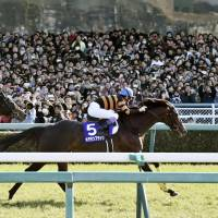 Japan looks to cap online race betting amid concerns over gambling addiction