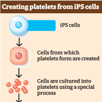 World's first method for mass-producing platelets from iPS cells unveiled by Kyoto startup