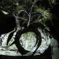 'Split Rock and Enso' at 'Forest Where the Gods Live' | COURTESY OF TEAMLAB