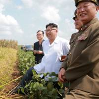 Late summer rains, private food supplies limit impact of North Korean drought