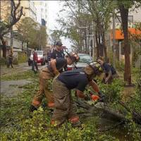 Workers clear downed trees after the Hurricane Maria hit San Juan Thursday in this still image taken from a social media video. | SEBASTIAN PEREZ / VIA REUTERS
