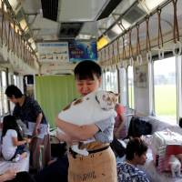 A staff member holds a cat in a train cat cafe, an event held on a local train to bring awareness to the culling of stray cats, in Ogaki, Gifu Prefecture, on Sunday. | REUTERS