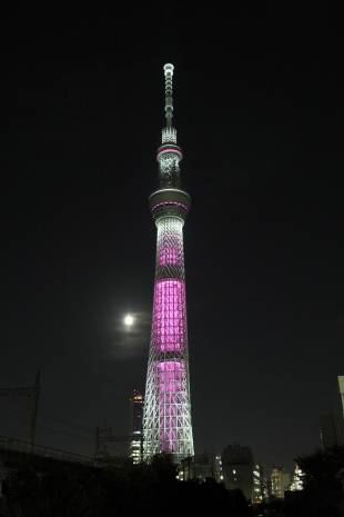 Pretty in pink: Tokyo Skytree is illuminated in pink on Oct. 1 last year to mark the beginning of breast cancer awareness month.