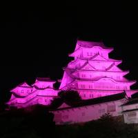 Himeji Castle in Hyogo Prefecture is illuminated in pink on Oct. 1 last year to mark the beginning of breast cancer awareness month. | COURTESY OF ESTĒE LAUDER COMPANIES