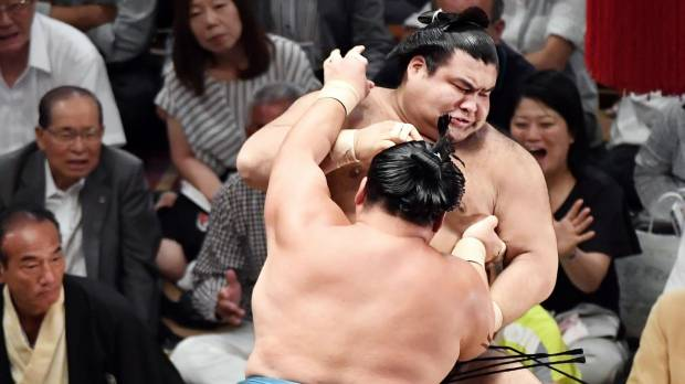 Sumo helps with heavy lifting in language