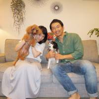 Japanese Chin named Chipie finds a home in Tokyo