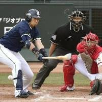 Swallows delay Carp's pennant celebration for at least one more day