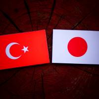 Starved for returns by near-zero rates at home, individual investors have propelled a 27 percent jump in Japanese mutual funds' investments in Turkish lira-denominated bonds this year. | ISTOCK