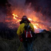 A firefighter battles a wildfire near Santa Rosa, California, on Saturday. | REUTERS