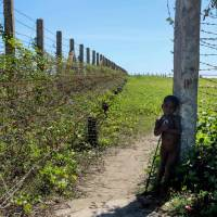 A child stands next to a barbed wire fence along the Myanmar-Bangladesh border near the Du Thar Ya village in Maungdaw, Northern Rakhine State, Myanmar, Tuesay. Ahead is a river they can't afford to cross, behind is hunger and hostility. So hundreds of Rohingya encamped on a black sand beach in Myanmar's Maungdaw cling to thinning hopes of safe passage to Bangladesh — before their food runs out. | MARION THIBAUT / VI AFP-JIJI