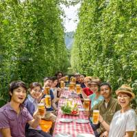 People attend a hops harvest festival at a farm in Tono, Iwate Prefecture, in August 2015. Kirin Co. supports young people wishing to start farming in the city, which is facing a shortage of growers and a drop in hops production. | KYODO