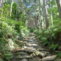 Well-worn path: The Kumano Kodo, the ancient pilgrimage routes across the Kii Peninsuia in Wakayama Prefecture, attract legions of tourists as well as pilgrims. | KYODO