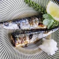 Changing times: Once common and cheap, 'sanma' (Pacific saury) is becoming more expensive as fishing yields drop. | MAKIKO ITOH