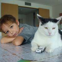 Hangin' with my buds: 'Dog-cat' Nakamun finds a family in Tokyo