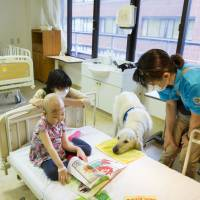 Furry friends: Shine On! Kids' Facility Dog Program is the first of its kind in Japan. Specially trained canines work full-time at children's hospitals under the initiative.   JUNKO ABE / SHINE ON! KIDS