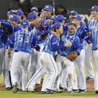 The BayStars celebrate their Central League Climax Series Final Stage-clinching victory over the Carp on Tuesday at Mazda Stadium. Yokohama defeated Hiroshima 9-3 in Game 5 to earn a trip to the Japan Series. | KYODO