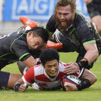 World XV too strong for Brave Blossoms in exhibition