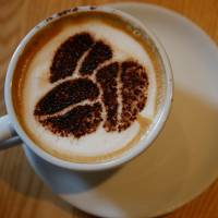 Three or four cups of coffee a day appear to confer the greatest benefit against premature death and heart disease. | REUTERS
