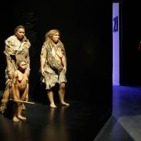 Neanderthals were doomed by constant inflow of modern humans from Africa, study says