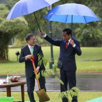 Indonesian President Joko Widodo (right) holds the umbrella for South Korean President Moon Jae-in during a tree planting ceremony at the presidential palace in Bogor, Indonesia on Thursday. | REUTERS