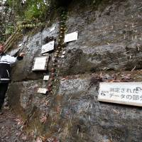 A stratum discovered in Ichihara, Chiba Prefecture, shown in this photo taken Monday is set to represent a geologic time period from 770,000 to 126,000 years ago. | KYODO