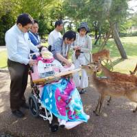 Misato Komiyama and her parents feed rice crackers to deer during a visit to Nara Park on June 3. | KYODO