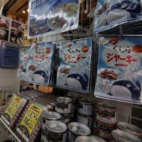 CITES to further probe Japan's research whaling for treaty violations
