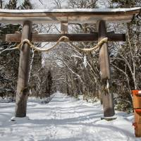 Peace and quiet: A torii gate stands at the entrance to Togakushi Shrine near the city of Nagano. | BEN BEECH