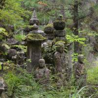Green mind: Buddha images in the cryptomeria forest of Okunoin. | STEPHEN MANSFIELD