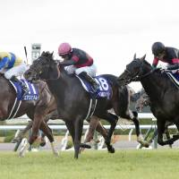 Persian Knight edges  Air Spinel for dramatic triumph in Mile Championship