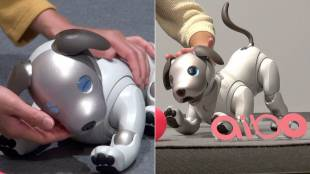 [VIDEO] The Return of Aibo