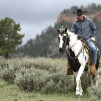 Interior Secretary Ryan Zinke rides in the Bears Ears National Monument with local and state representatives in Blanding, Utah, in May. Zinke is strongly disputing a claim by outdoor retailer Patagonia that President Donald Trump 'stole' public land by shrinking two national monuments in Utah. | SCOTT G WINTERTON / THE DESERET NEWS / VIA AP