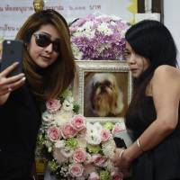 101 cremations: More Thais giving pets Buddhist funerals to boost their chances of a better next life