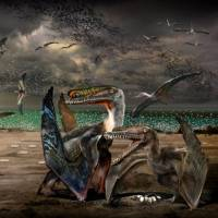 Pterosaur hatchlings needed their parents, trove of eggs reveals